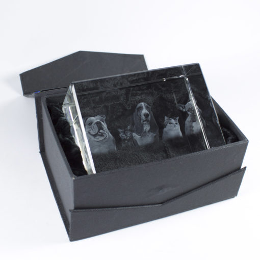 Photo Crystal 3D 120mm Rectangle Gift Box