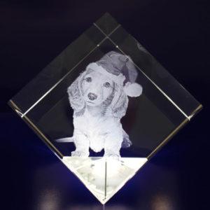 Photo-Crystal-2D-Crystal-Diamond